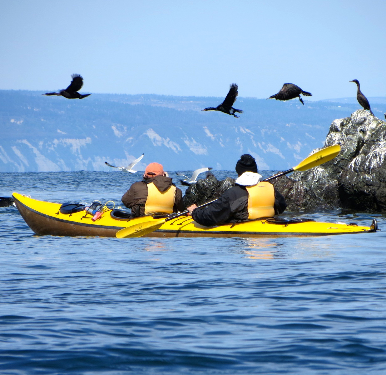 KAYAKING - Paddle the waters of Kachemak Bay State Park